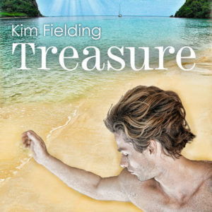treasure cover fixed